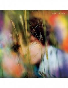 Sam Amidon (1 LP)