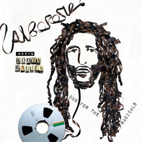 Dub For Radicals (1 LP)